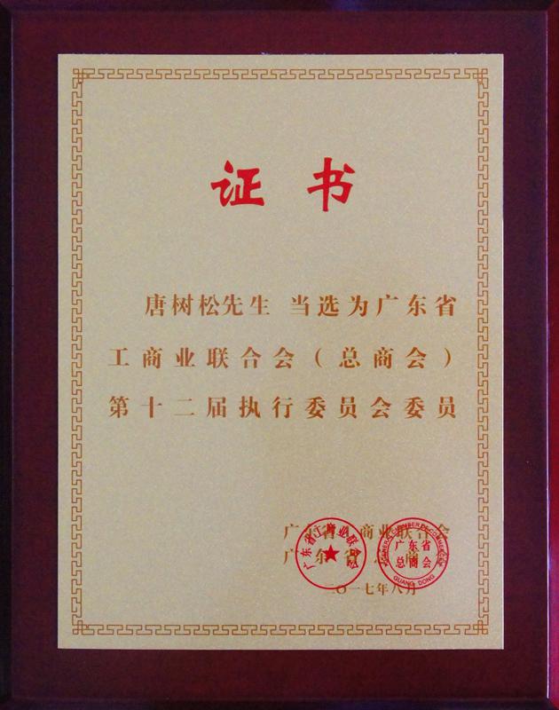 赛思达唐树松董事长当选省工商联执委6